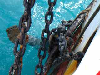 fouled anchor
