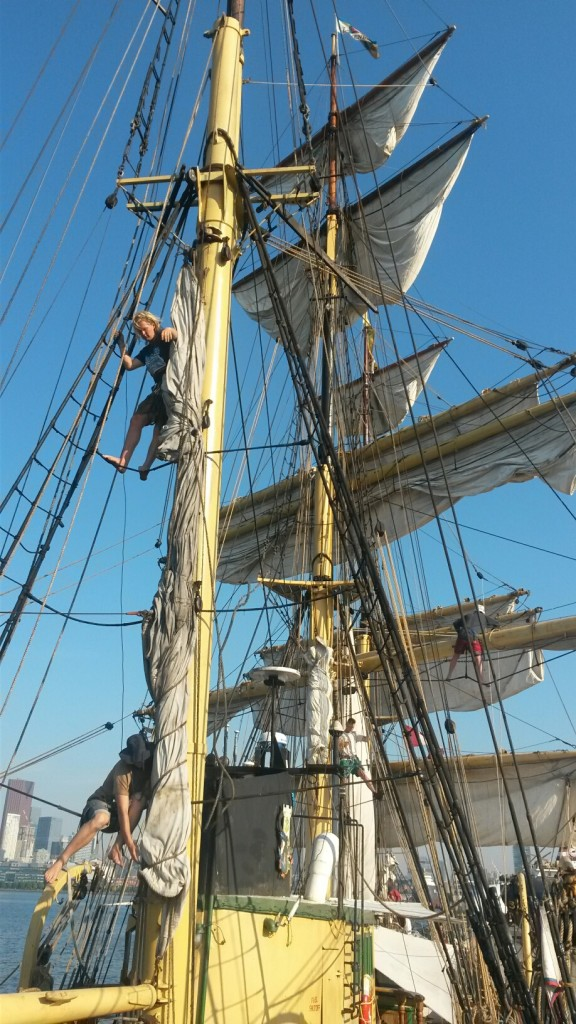 crew work aloft aboard PICTON CASTLE to loose wet sails to dry